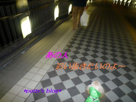 b0166838_1948767.jpg