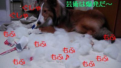 e0195743_233190.jpg