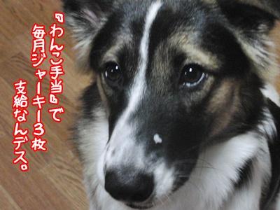 b0185650_10473841.jpg