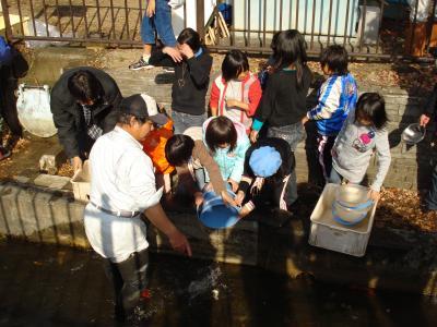 第五回稚魚の放流 2009.11.21(土) 晴れ_e0007558_22583017.jpg