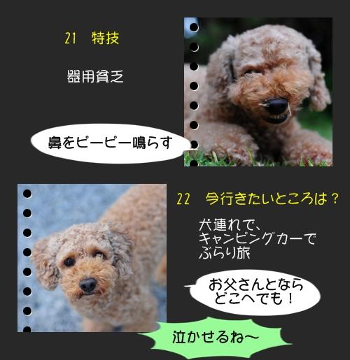 b0187161_911436.jpg