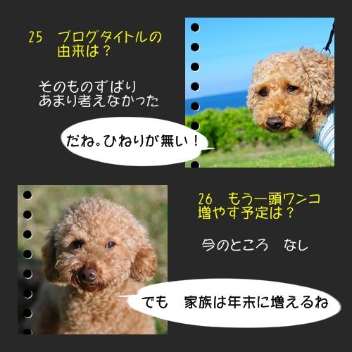 b0187161_912339.jpg