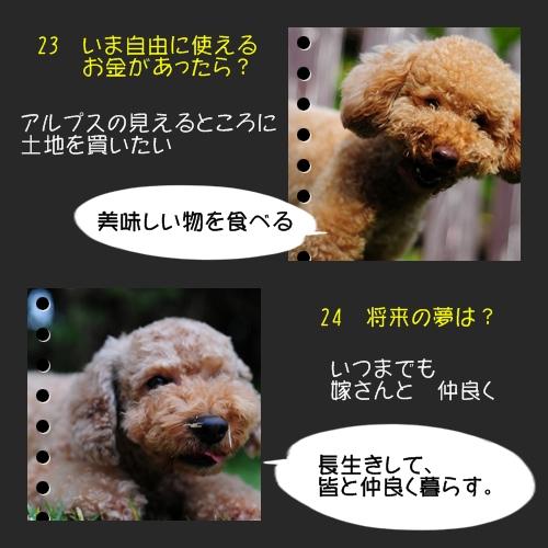 b0187161_91279.jpg