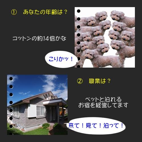 b0187161_973374.jpg