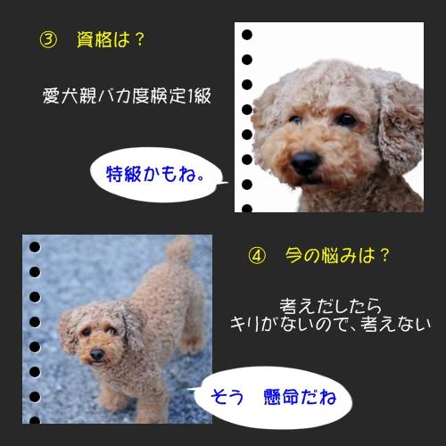 b0187161_975847.jpg