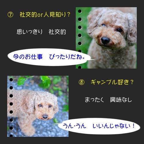 b0187161_985425.jpg