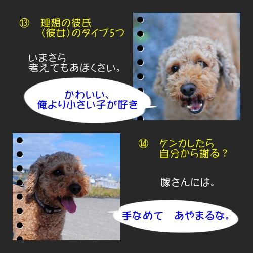 b0187161_99598.jpg