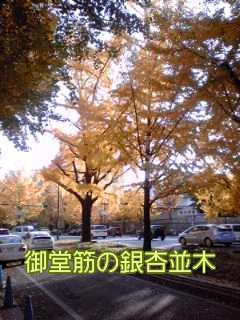 f0200871_142090.jpg