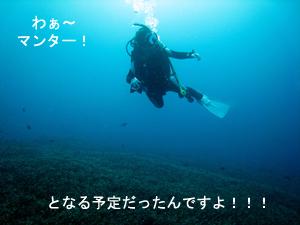 f0144385_1432125.jpg