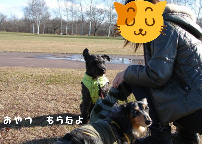 お友達増えたよ!_f0195891_1639361.jpg