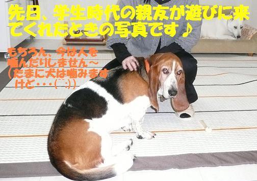 f0121712_0233885.jpg