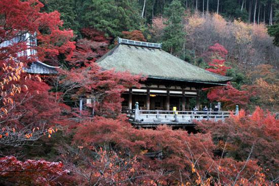 清水寺1 紅葉盛り _e0048413_1935663.jpg