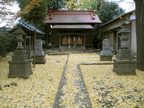 境内の銀杏の葉が晩秋を告げる_d0130714_1993426.jpg