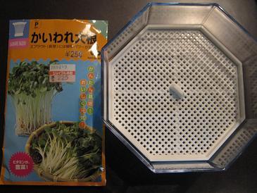 家庭菜園はまだ続く・・・_a0139242_9412071.jpg