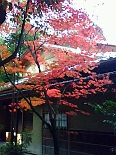 今年最後の清掃奉仕~靖国神社にて~_b0169850_20554322.jpg