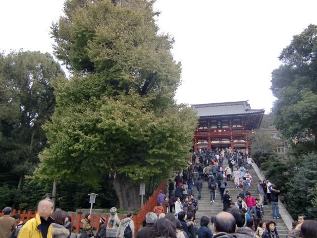 鎌倉散歩№4 紅葉とKIBIYA_d0080653_1334757.jpg