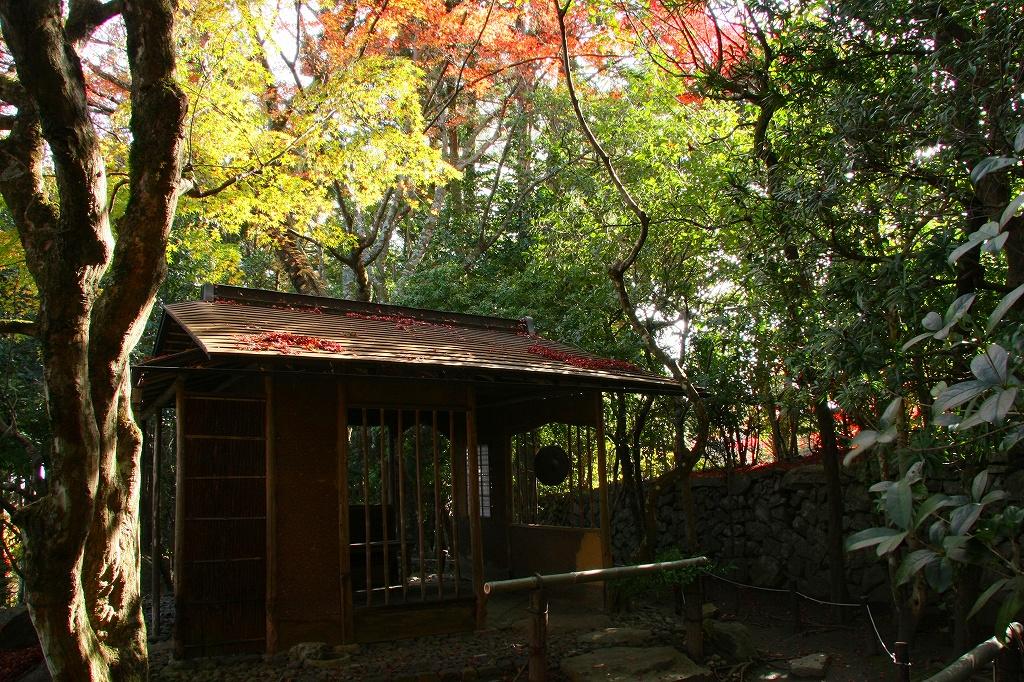 坂本の紅葉6 旧竹林院_c0196076_72365.jpg