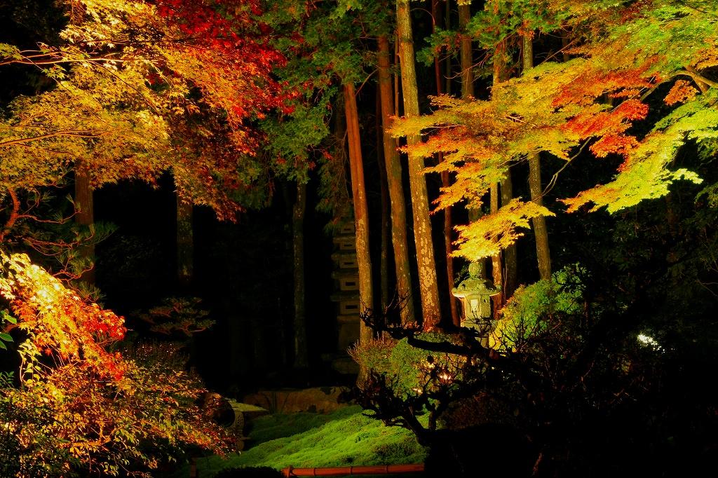 坂本の紅葉6 旧竹林院_c0196076_742882.jpg