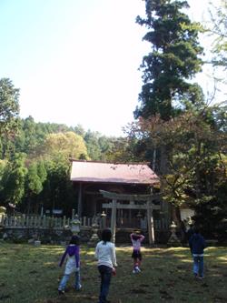 秋の綾部で自然体験_e0008880_21293050.jpg