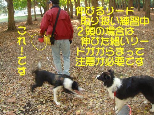 b0101991_21192259.jpg
