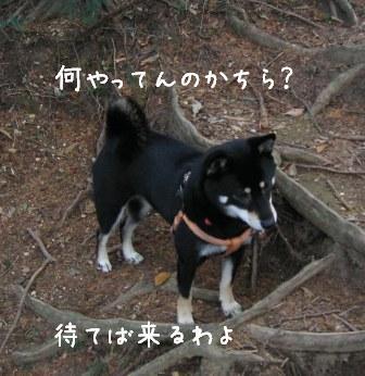 f0068501_143504.jpg