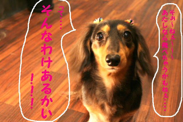 b0130018_2015064.jpg
