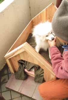 新しい犬小屋(ハウス)_f0131628_219359.jpg