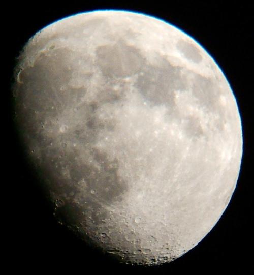 2009年11月28日の月(月齢11.5)_e0089232_18493691.jpg