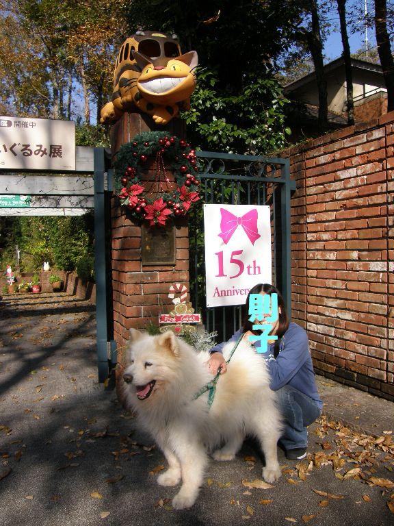 伊豆から東京へ  その①_f0128542_1385013.jpg