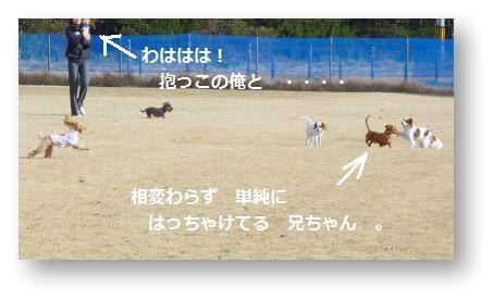 b0112758_17475290.jpg