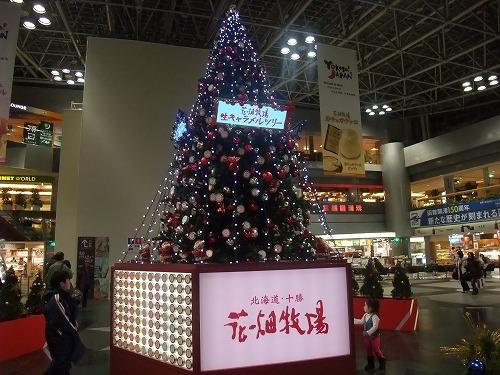 週末は札幌日帰り出張_c0184265_2023410.jpg