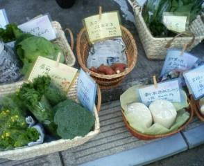 野菜でうきうき_b0011075_2032171.jpg