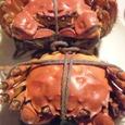 「シェフス」の上海蟹でバースデー・ディナー_a0138976_15335994.jpg
