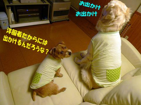 d0043478_2356147.jpg