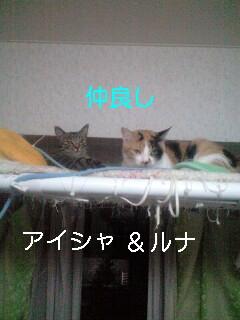 b0112380_19175247.jpg