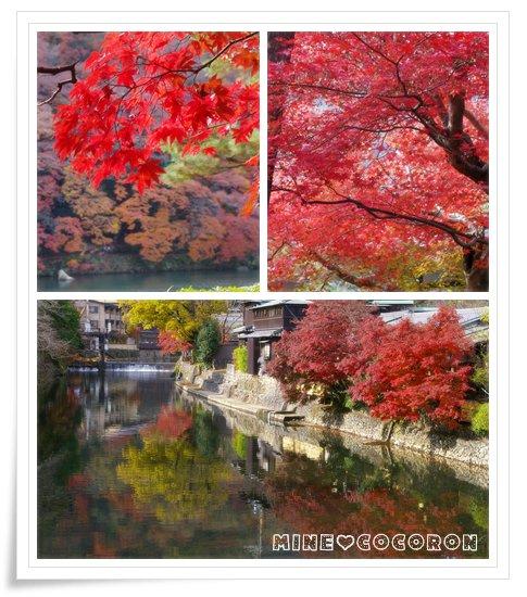 紅葉の嵐山_a0053987_21524795.jpg
