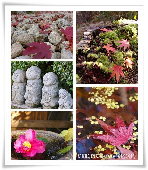 紅葉の嵐山_a0053987_21542570.jpg