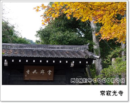 紅葉の嵐山_a0053987_22433151.jpg
