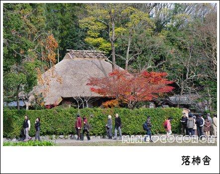 紅葉の嵐山_a0053987_2243438.jpg