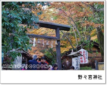 紅葉の嵐山_a0053987_22441819.jpg