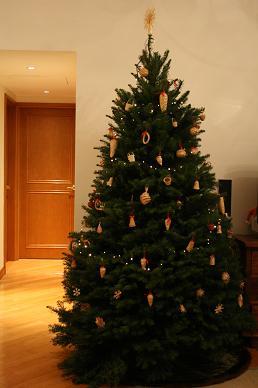 Christmas tree 2009_d0088196_23292354.jpg