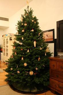 Christmas tree 2009_d0088196_23325764.jpg