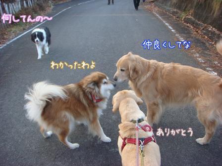 えっちゃん2日目はお祭りさわぎ_f0064906_18411037.jpg