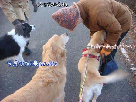 えっちゃん2日目はお祭りさわぎ_f0064906_18425891.jpg