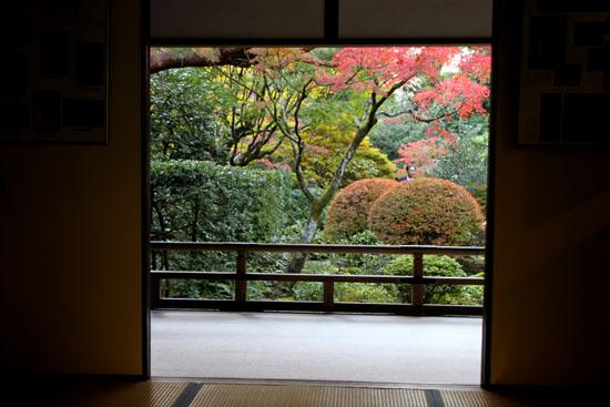 紅葉の大徳寺 高桐院_e0048413_2272610.jpg