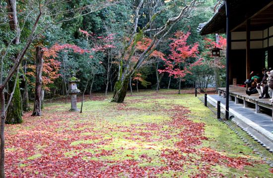 紅葉の大徳寺 高桐院_e0048413_228184.jpg