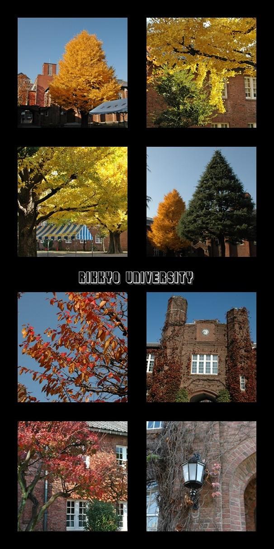 Autumn at Rikkyo Univ._f0012718_2213356.jpg