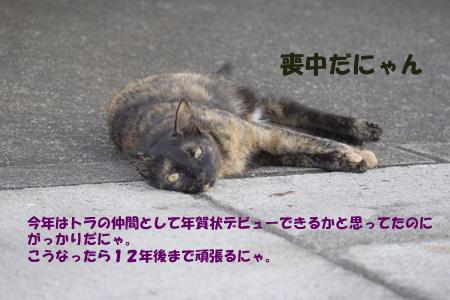 f0041023_116031.jpg