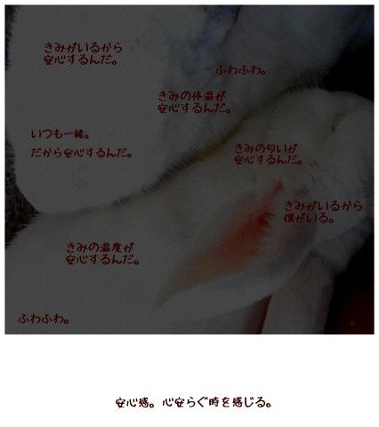 c0221041_2212251.jpg