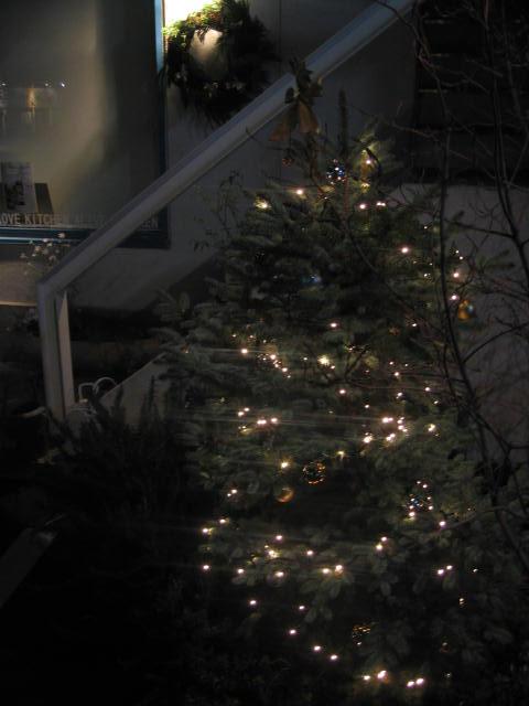 クリスマス★_c0200330_721441.jpg